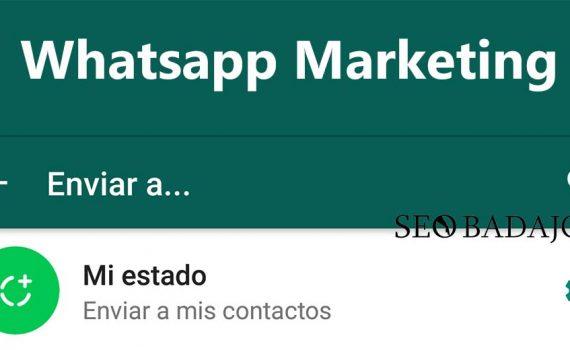 estados de whatsapp para marketing digital